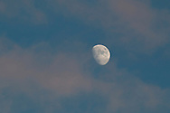 Middletown, New York - The waxing gibbous moon and clouds inthe twilight sky on Dec. 31, 2014.