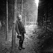 May 6, 1945. Concentration Camp Victim leans against a tree to rest after every few feet of walking. Probably Gunskirchen Lager camp, liberated by the 71st Division