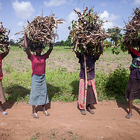 Uganda: Amuria