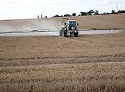 Chemical sprayer spraying field