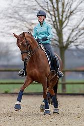 BECKS Jil Marielle mit Damon´s Satelite NRW<br /> Senden - Homestory Jil Marielle Becks 2020<br /> © www.sportfotos-lafrentz.de/