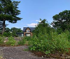 Tuckedaway - outside tiny Bradford - 3 July 2020