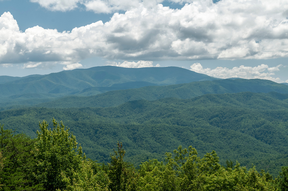 View of Gregory Bald (left) and Parson Bald (right) at the Gregory Bald Overlook on the Foothills Parkway in Great Smoky Mountains National Park in Walland, Tennessee on Wednesday, August 12, 2020. Copyright 2020 Jason Barnette