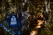 Blue Room All