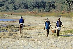 Boys Carrying Basket And Girl Riding Bike
