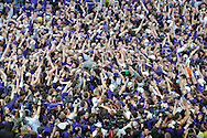 Jan 30, 2008; Manhattan, KS, USA; Kansas State Wildcat fans celebrate on the floor after beating the Kansas Jayhawks for the first time in 25 years at home 84-75 at Bramlage Coliseum in Manhattan, KS. Mandatory Credit: Peter G. Aiken-US PRESSWIRE