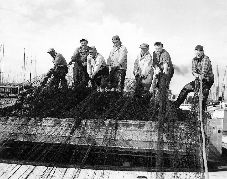 Commercial fishermen worked over their gear at Salmon Bay Terminal, now known as Fishermen's Terminal, west of the Ballard Bridge in 1954. <br /> <br /> Josef Scaylea / The Seattle Times