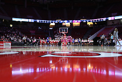 NORMAL, IL - February 10: Doug Collins Court during a college women's basketball Play4Kay game between the ISU Redbirds and the Indiana State Sycamores on February 10 2019 at Redbird Arena in Normal, IL. (Photo by Alan Look)