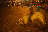 Bull Riding: Barrera jpg