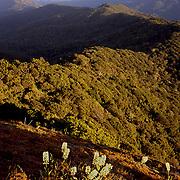 Sunrise, Kahlpahlim Rock<br /> FNQ