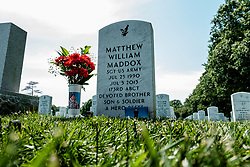 May 23, 2019 - Arlington, VA, United States - U.S. Army SGT MATTHEW MADDOX in Section 60 at Arlington National Cemetery on May 23, 2019 in Arlington,Virginia. SGT MADDOX was assigned to 173rd Airborne Brigade Combat team, MADDOX was killed in 2013 while deployed Afghanistan. (Credit Image: © Michael A. McCoy/ZUMA Wire)