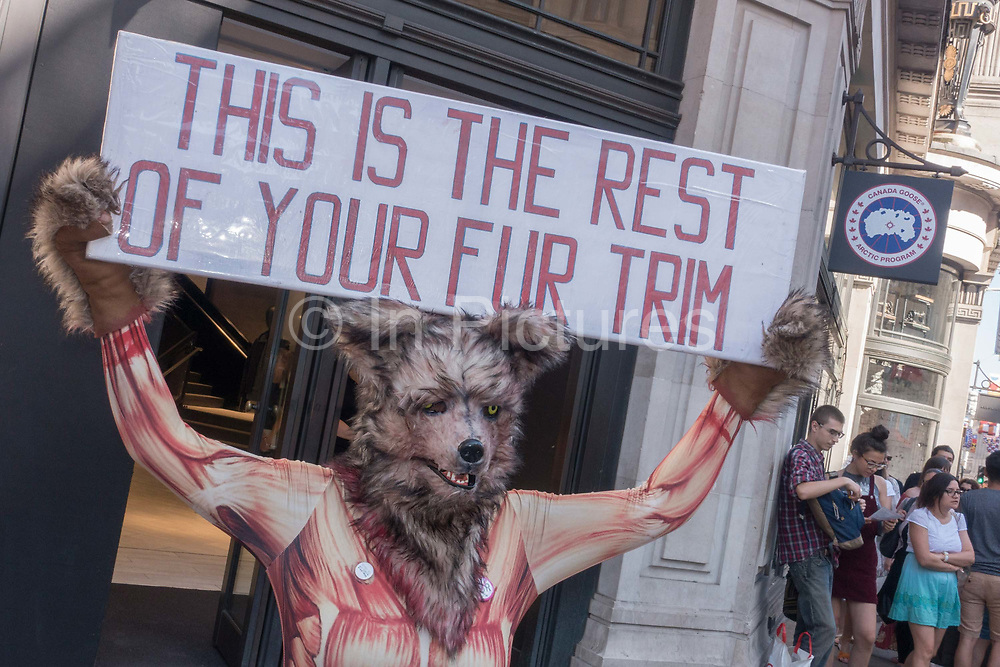 Animal rights activists, dressed as a skinned fox, stage a demo outside Canada Goose store on Regents Street on 30th June 2018 in central London in the United Kingdom. Canada Goose has faced global criticism for the use of fur-trimmed hoods, hats, down-filled jackets and parkas. Demonstrations have been held outside its flagship shop on Regent Street since opening in 2017. PeTA, People of the Ethical Treatment of Animals are running campaigns to stop Canada Goose selling real fur on all products.