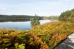 Langsett Reservoir on the Edge of the Peak District Shot from the south East side of the dam looking East toward Midhope Cliff Lane and the dam wall<br /> 07 October 2012.<br /> Image © Paul David Drabble