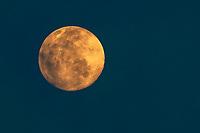 The rising full moon pictured over Kaeng Krachan National Park in January 2021.