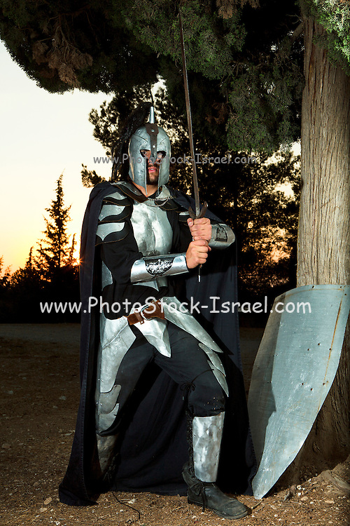 A knight in shining armour wielding sword at sunset. Model Release Available