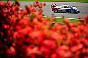29-31 March, 2012, Birmingham, Alabama USA.Joao Barbosa, Darren Law, Action Express Racing .(c)2012, Jamey Price.LAT Photo USA