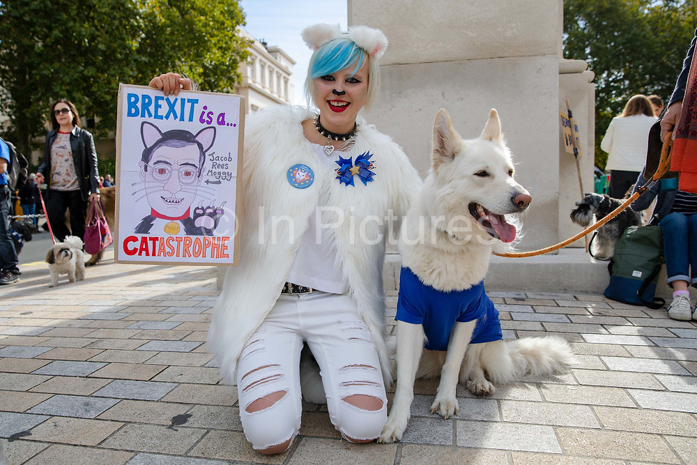 A woman with her dog wearing a European Union flag and a Brexit is a catastrophe placard joins pet owners to take part in an anti Brexit Wooferendum rally on October 07, 2018 in London, England to protest against Britain leaving the European Union.