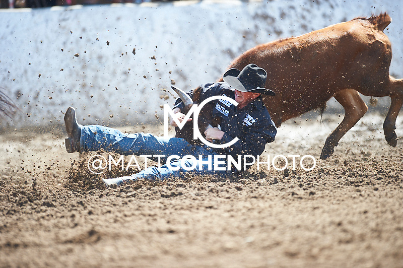 Steer wrestler Russell Cardoza of Terrebonne, OR competes at the Clovis Rodeo in Clovis, CA.<br /> <br /> <br /> UNEDITED LOW-RES PREVIEW<br /> <br /> <br /> File shown may be an unedited low resolution version used as a proof only. All prints are 100% guaranteed for quality. Sizes 8x10+ come with a version for personal social media. I am currently not selling downloads for commercial/brand use.