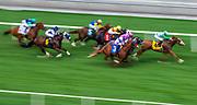 Horse Racing at Santa Anita Race Track on Friday, March 6, 2020 in Pasadena, California. (Photo/Brandon Gallego)