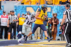 Sep 22, 2018; Morgantown, WV, USA; West Virginia Mountaineers wide receiver David Sills V (13) catches a touchdown pass during the third quarter against the Kansas State Wildcats at Mountaineer Field at Milan Puskar Stadium. Mandatory Credit: Ben Queen-USA TODAY Sports