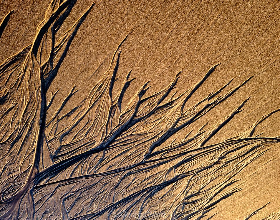 Last Sun on Sand Pattern,Phillip Burton Wilderness, Point Reyes National Seashore, California