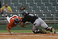 Photo by Alex Jones..Coyotes #1 Jorge Rodriguez is safe at home as Whitewings catcher Kevin Griffin tackles him but leaves the ball behind in the 3rd inning of Wednesday night's game.