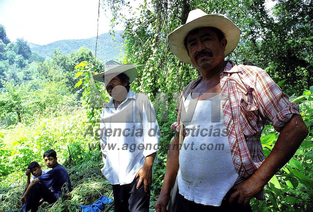 """Malinalco, Méx.- Campesinos productores de aguardiente """"mezcal"""" preparan el horno de hoyo en donde iniciaran el cocimiento del agave, el proceso tarda mas de veinte dias. Agencia MVT / Mario Vázquez de la Torre."""
