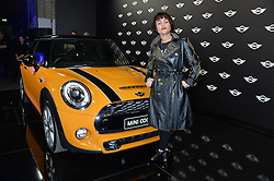 Monday 18th November 2013 saw a host of London hipsters, social faces and celebrities, gather together for the much-anticipated World Premiere of the brand new MINI.<br /> Attendees were among the very first in the world to see and experience the new MINI, exclusively revealed to guests during the party. Taking place in the iconic London venue of the Old Sorting Office, 21-31 New Oxford Street, London guests enjoyed a DJ set from Little Dragon, before enjoying an exciting live performance from British band Fenech-Soler.<br /> Picture Shows:-JAIME WINSTONE