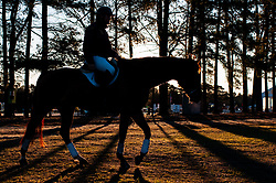 March 22, 2019 - Raeford, North Carolina, US - March 23, 2019 - Raeford, N.C., USA - A rider and horse return to the barn as the sun rises at the sixth annual Cloud 11-Gavilan North LLC Carolina International CCI and Horse Trial, at Carolina Horse Park. The Carolina International CCI and Horse Trial is one of North AmericaÃ•s premier eventing competitions for national and international eventing combinations, hosting International competition at the CCI2*-S through CCI4*-S levels and National levels of Training through Advanced. (Credit Image: © Timothy L. Hale/ZUMA Wire)