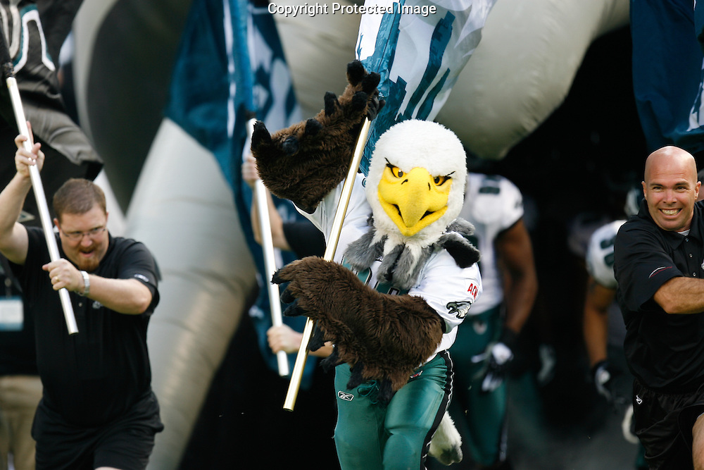 """21 Sept 2008: Philadelphia Eagles Mascot """"Swoop"""" leads the teams entrance before the game against the Pittsburgh Steelers on September 21st, 2008.  The Eagles won 15-6 at Lincoln Financial Field in Philadelphia Pennsylvania."""