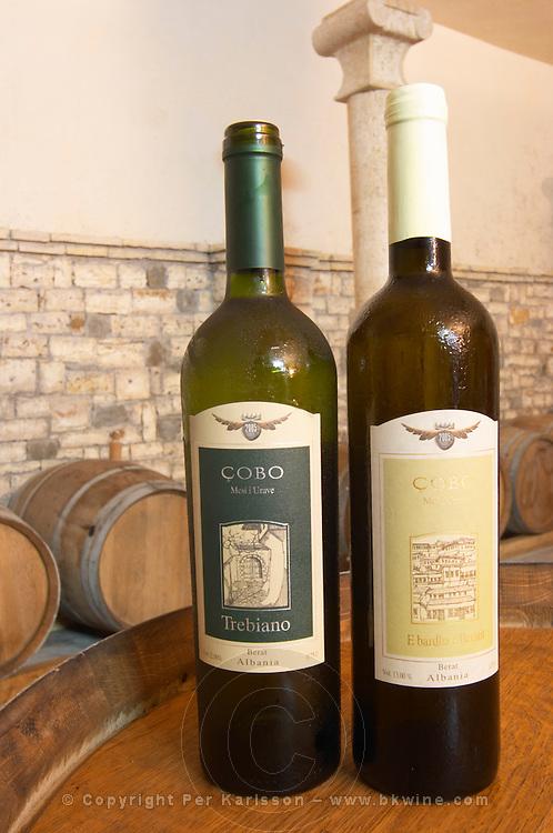 Two bottles: Trebiano / Trebbiano, and E bardha e Beratit 2005 Cobo winery, Poshnje, Berat. Albania, Balkan, Europe.