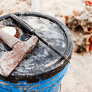 A hatchet and knife sit on a bucket. These are the tools used to crack open queen conch (Lobatus gigas) the national food of The Bahamas. Image made on Harbour Island, Bahamas.