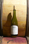 bourgogne 2003 dom rossignol trapet gevrey-chambertin cote de nuits burgundy france