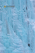 Ice climber on the Weeping Wall icefall in Banff National Park, Alberta, Canada