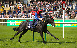 Jackstar ridden by jockey Richard Kingscote on his way to winning the Montaz Restaurant EBF Novice Stakes during day one of The Bet365 Craven Meeting at Newmarket Racecourse, Newmarket.