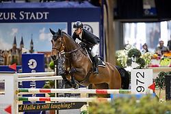 Meech Daniel, NZL, Fine<br /> Veolia Championat<br /> Braunschweig - Löwenclassics 2019<br /> © Hippo Foto - Stefan Lafrentz