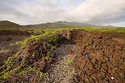 Heiau, La Perouse Bay, Ahina Kiau Preserve, Maui, Hawaii<br />