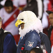 EAST HARTFORD, CONNECTICUT- October 16th: A United States fan dressed as a Bald Eagle during the United States Vs Peru International Friendly soccer match at Pratt & Whitney Stadium, Rentschler Field on October 16th 2018 in East Hartford, Connecticut. (Photo by Tim Clayton/Corbis via Getty Images)