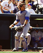 DENVER - 1995:  Mike Piazza of the Los Angeles Dodgers catches during an MLB game versus the Colorado Rockies at Coors Field in Denver, Colorado during the 1995 season. (Photo by Ron Vesely) Subject:   Mike Piazza