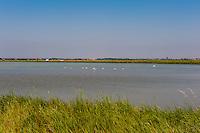 Salt pans and countryside around Ravenna