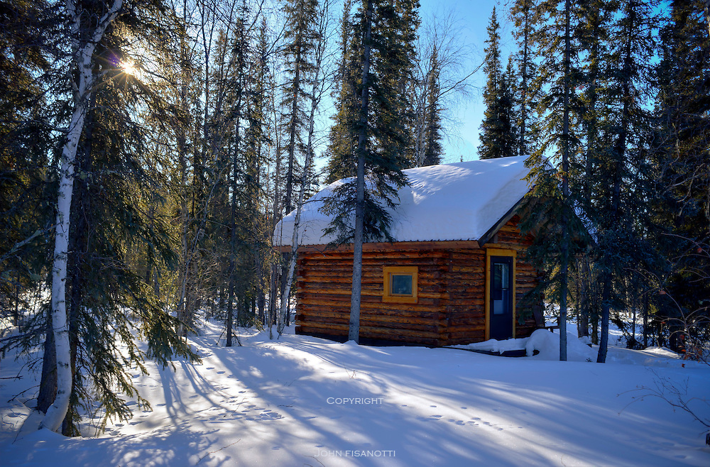 Cabin in the woods, near Coldfoot Camp, Alaska