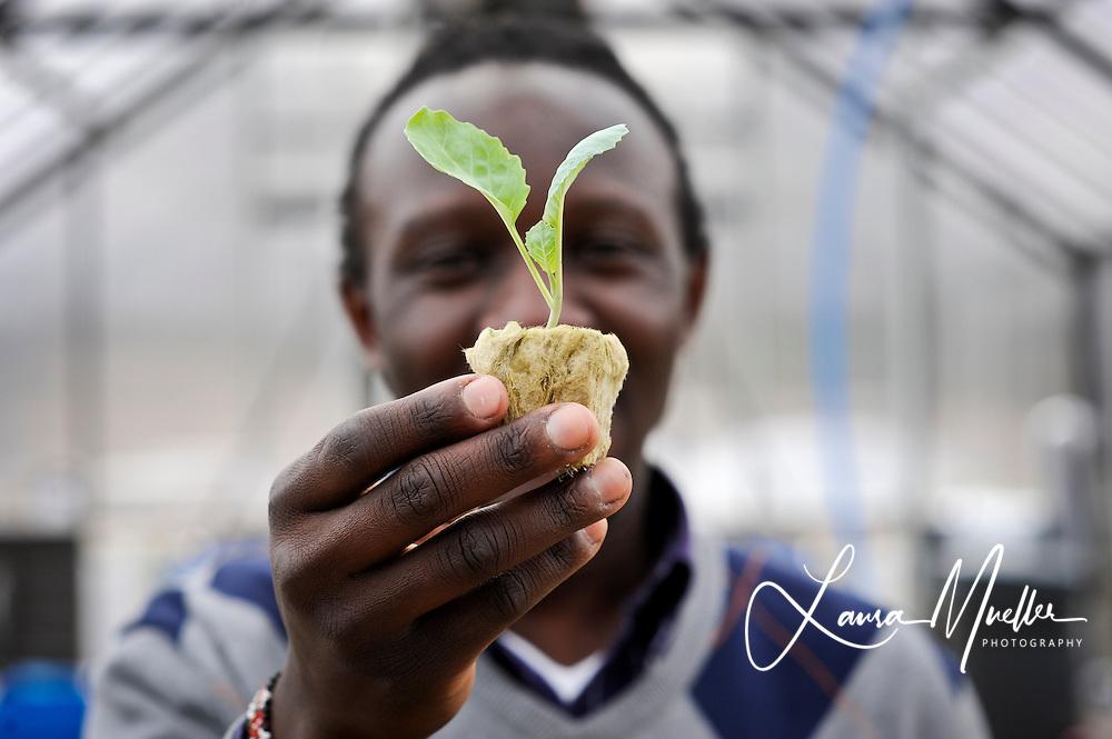 20130315 Johnson C. Smith University Biology Professor Philip Otienoburu and student Christophe Fatton, 22, tend to the University's auquaponic garden.<br /> photo by Laura Mueller<br /> © Laura Mueller 2013