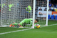 West Ham keeper Adrian holds onto ball after it appeared to cross line. Barclays Premier league, Cardiff city v West Ham Utd match at the Cardiff city Stadium in Cardiff, South Wales on Saturday 11th Jan 2014.<br /> pic by Andrew Orchard, Andrew Orchard sports photography.