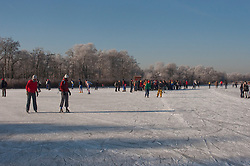 Ankeveen, Wijdemeren Winter, koud, cold snow, sneeuw, winter, cold, wit, white