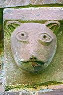 Norman Romanesque exterior corbel no 43 - sculpture of an animal head, maybe a cat. The Norman Romanesque Church of St Mary and St David, Kilpeck Herefordshire, England. Built around 1140 .<br /> <br /> Visit our MEDIEVAL PHOTO COLLECTIONS for more   photos  to download or buy as prints https://funkystock.photoshelter.com/gallery-collection/Medieval-Middle-Ages-Historic-Places-Arcaeological-Sites-Pictures-Images-of/C0000B5ZA54_WD0s