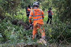 Denham, UK. 29th September, 2020. A tree surgeon working on behalf of HS2 Ltd, facilitated by around two dozen security guards, fells trees in Denham Country Park for works connected to the HS2 high-speed rail link. Anti-HS2 activists based at the nearby Denham Ford Protection Camp and protesting against the destruction of the woodland contend that the area of Denham Country Park currently being felled is not indicated for felling on documentation supplied by HS2 Ltd.
