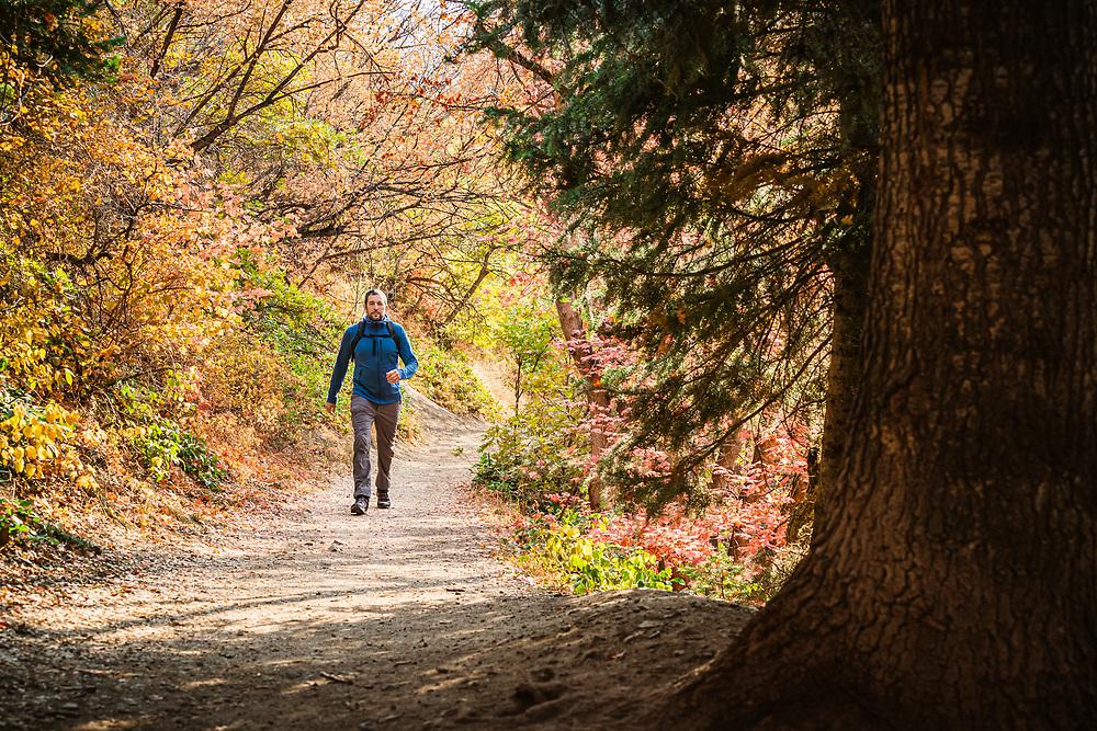 Noah Howell enjoys a moring hike on the Pipline Trail, Millcreek Canyon, Utah.
