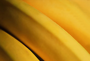 Close up, selective focus photograph of a bunch of bananas