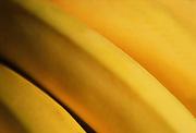 Close up, selective focus photograph of a bunch of bananas