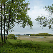 Cox Reservation in Essex Massachsetts is managed by the Essex County Greenbelt Association and has an expansive view of the Ipswich River basin where it flows into the Atlantic.